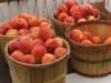 saims-fruit-palisade-peaches