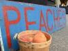saims-fruit-peach-sign
